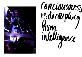 consciousness is decoupling from intelligence