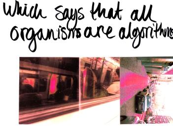 Organisms are algorithms